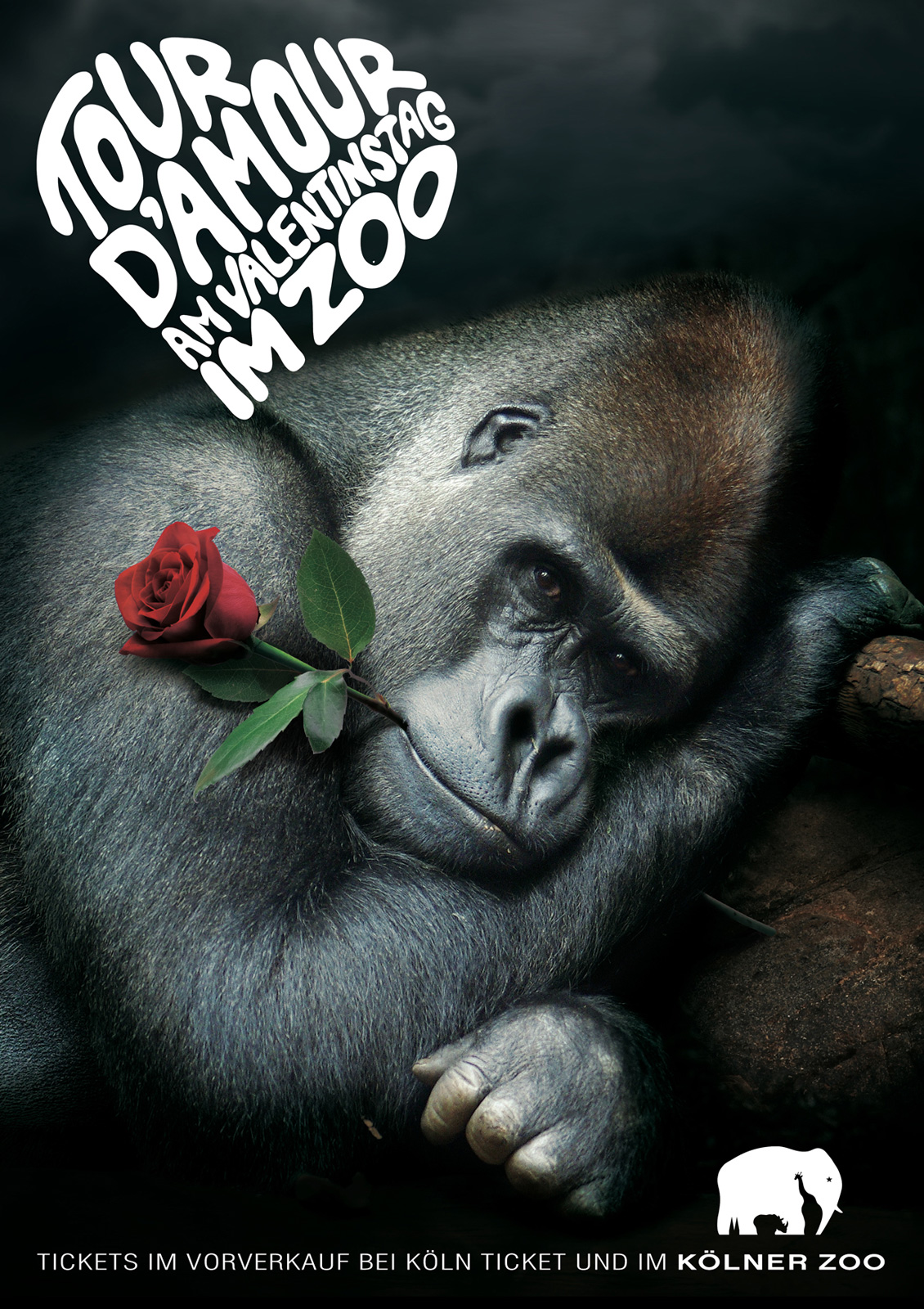 llllitl-kolner-zoo-koln-allemagne-deutschland-advertising-publicité-animals-saint-valentin-day-2