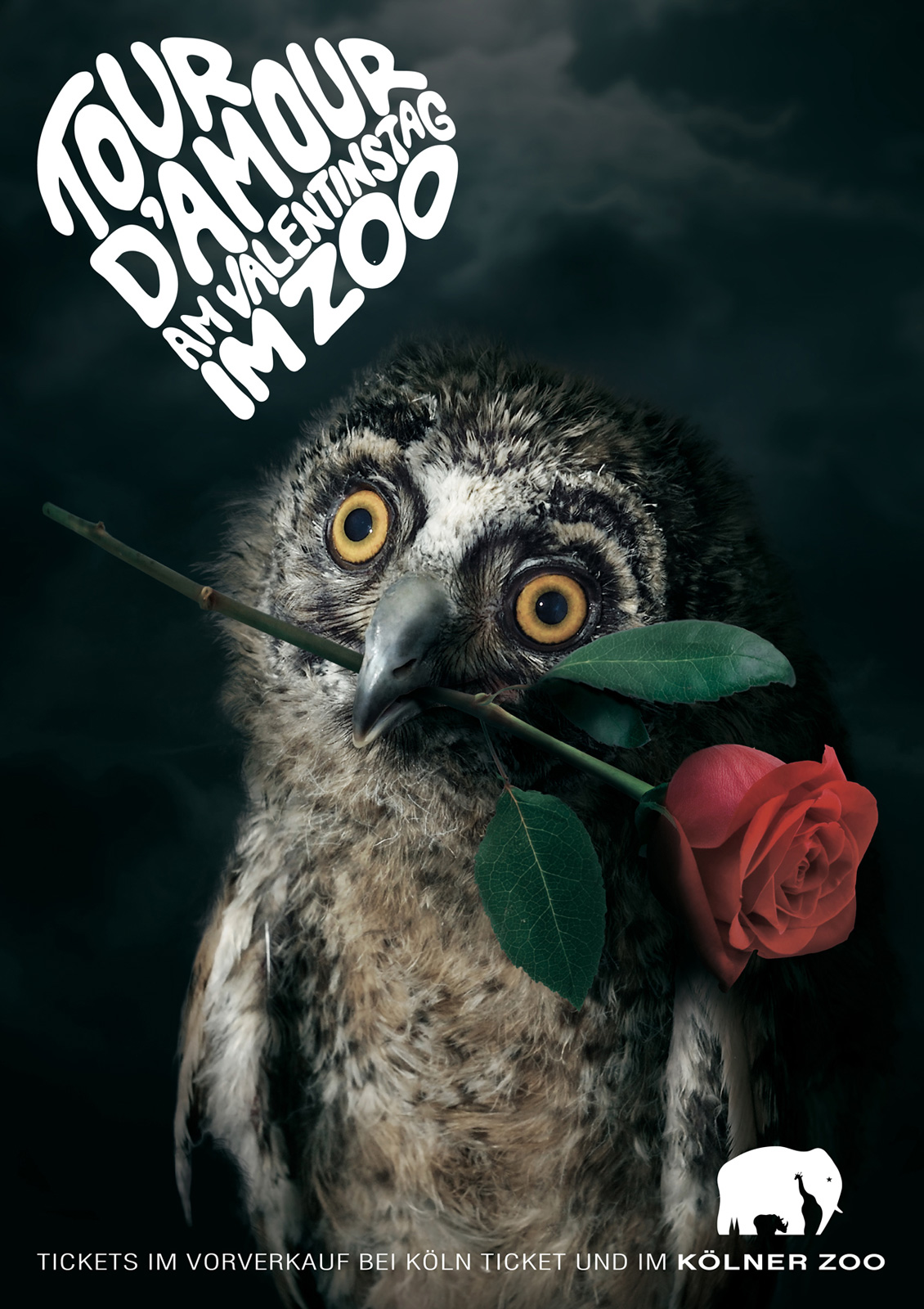 llllitl-kolner-zoo-koln-allemagne-deutschland-advertising-publicité-animals-saint-valentin-day-3