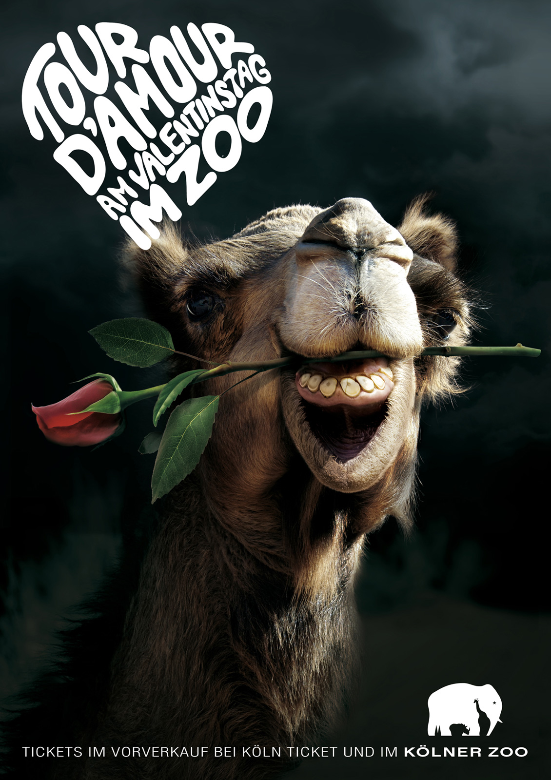 llllitl-kolner-zoo-koln-allemagne-deutschland-advertising-publicité-animals-saint-valentin-day