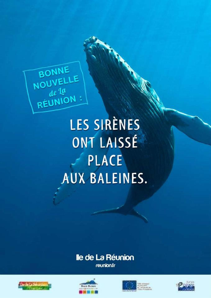llllitl-ile-de-la-réunion-publicité-being-tbwa