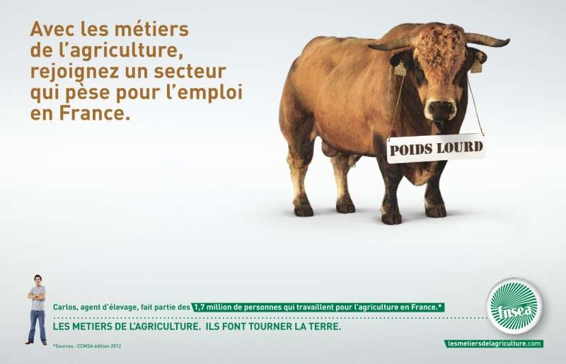 llllitl- FNSEA (Fédération Nationale des Syndicats d'Exploitants Agricoles-publicité-print-marketing-métiers-agriculture-agence-babel