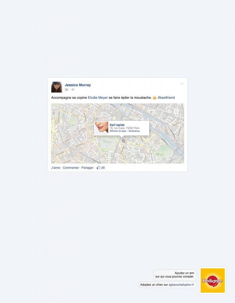 pedigree-publicite-marketing-facebook-reseaux-sociaux-ajoutez-un-ami-chiens-agence-clm-bbdo-4