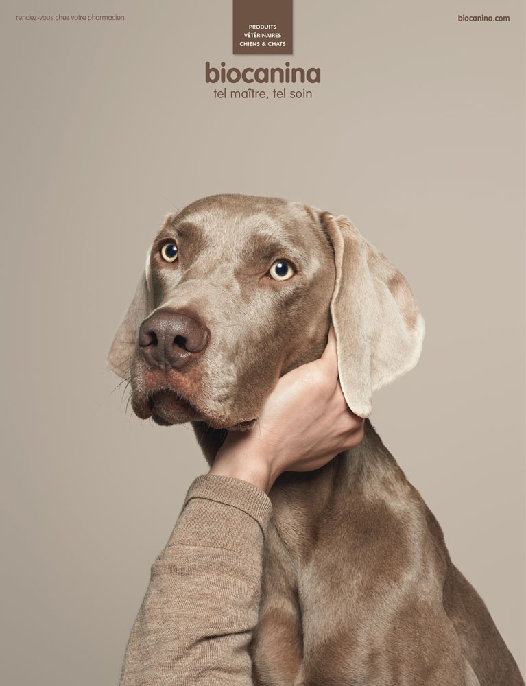 llllitl-biocanina-publicité-marketing-print-soin-vétérinaire-animal-de-compagnie-chien-chat-dans-publicité-agence-leg-paris