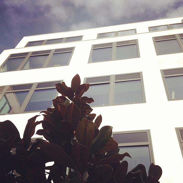 ddb-paris-bureaux-agence-publicité-locaux-adresse-73-75-rue-la-condamine-75017-paris-9