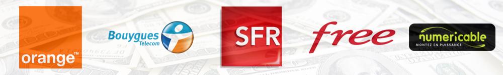 investissements-publicitaires-medias-marques-annnonceurs-publicité-marketing-france-2013-4