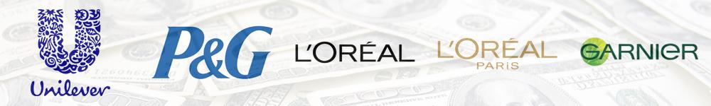 investissements-publicitaires-medias-marques-annnonceurs-publicité-marketing-france-2013-6