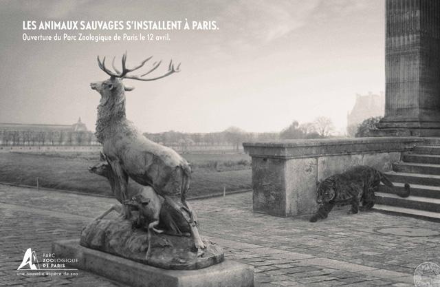 parc-zoologique-de-paris-zoo-vincennes-2014-ouverture-publicité-marketing-animaux-sauvages-agence-publicis-conseil-2