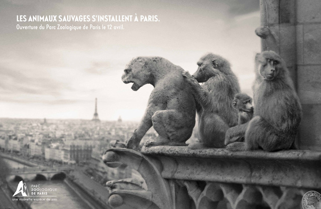 parc-zoologique-de-paris-zoo-vincennes-2014-ouverture-publicité-marketing-animaux-sauvages-agence-publicis-conseil-3