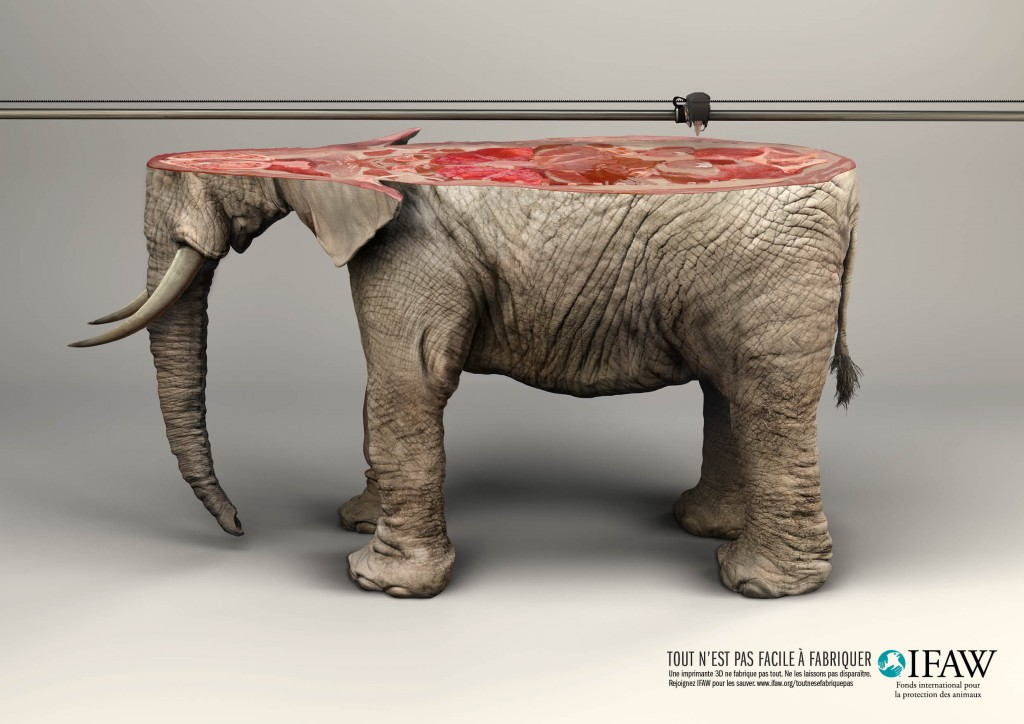 IFAW-International-Fund-for-Animal-Welfare-imprimante-impression-3D-print-printer-baleine-whale-elephant-publicite-communication-animaux-agence-young-rubicam-yr-paris-2