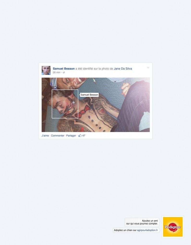 pedigree-publicite-marketing-facebook-reseaux-sociaux-ajoutez-un-ami-chiens-agence-clm-bbdo-2