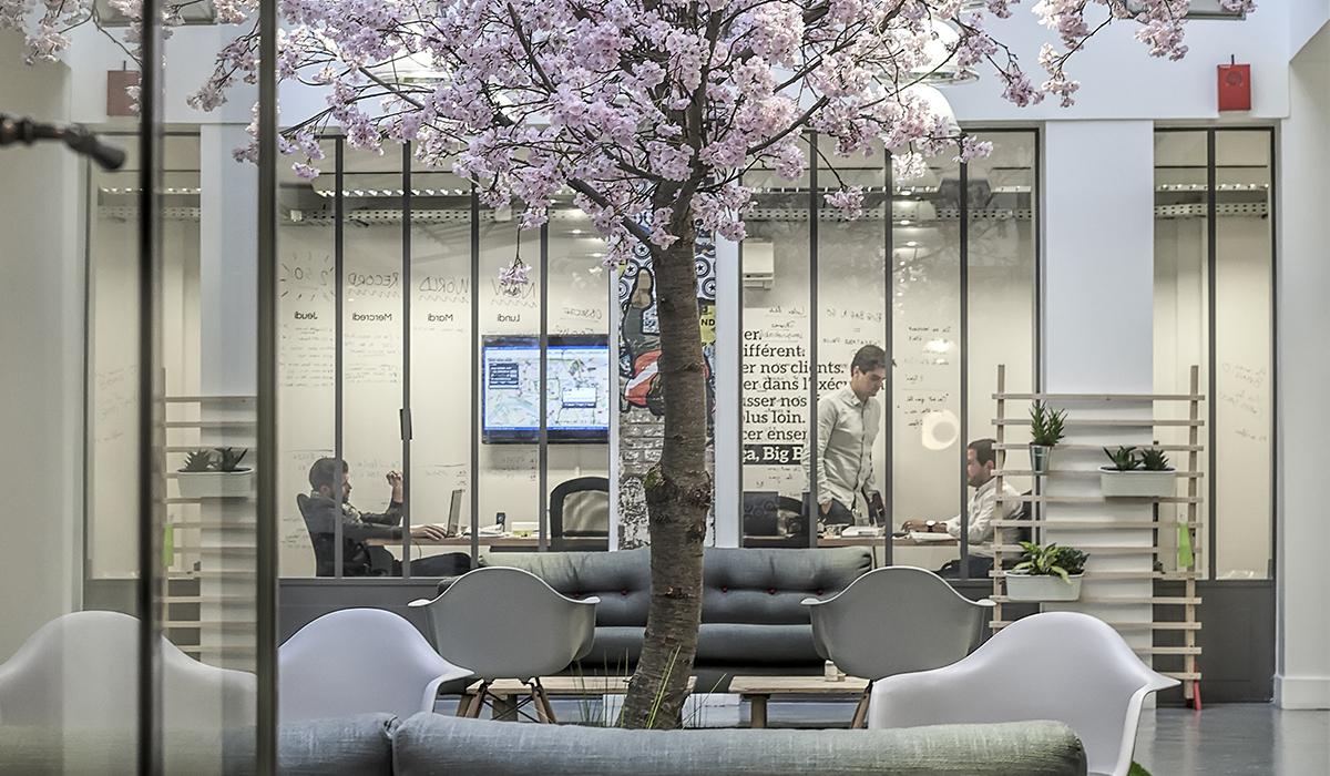 bureaux-agence-publicite-evenementiel-digital-les-pietons-jay-walker-paris-12