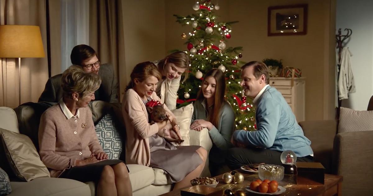 canal-plus-publicite-noel-2015-phacochere-sanglier-cadeau-regret-sapin-famille-agence-betc-paris-decembre-2015