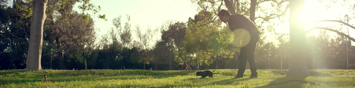 purina-commercial-puppyhood-most-viral-ads-2015