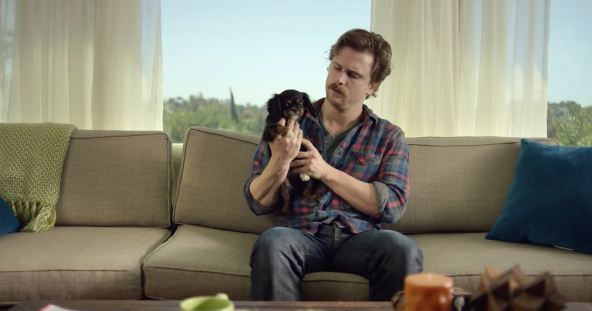 purina-commercial-puppyhood-most-viral-ads-commercials-2015