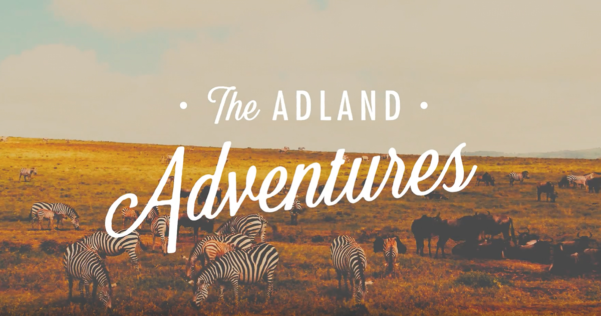 adland-adventures-ad-agency-agence-publicite-animal-animaux-sauvages