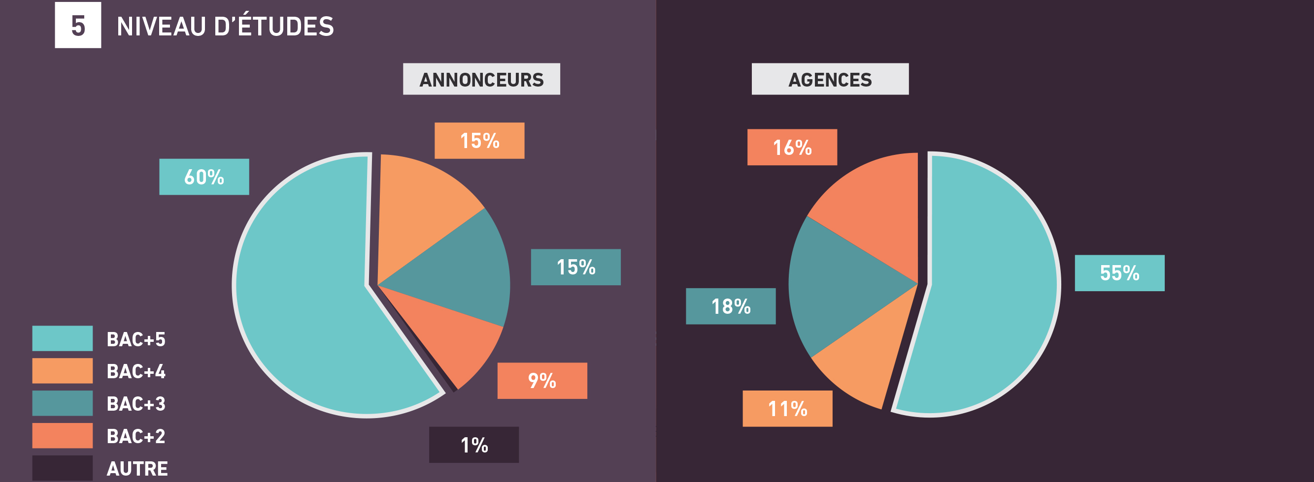 tendances-emploi-publicite-agences-annonceurs-barometre-metiers-communication-2018-sup-de-com-niveau-etudes