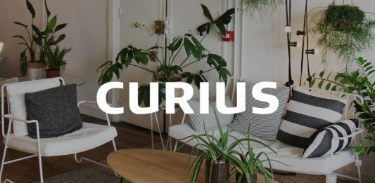 agence-curius-design-paris