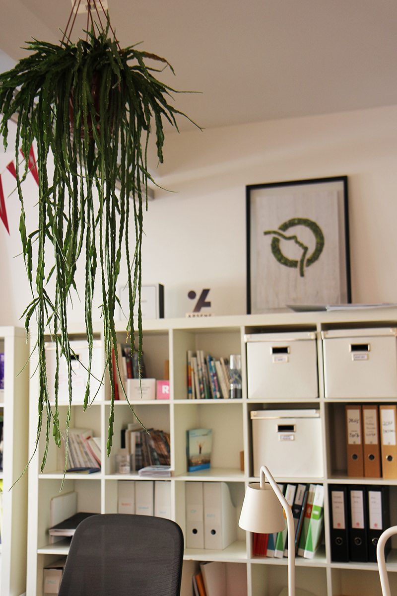 agence-curius-design-paris-photos-bureaux-12